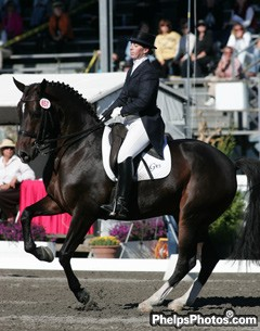 tara stegen source dressage daily